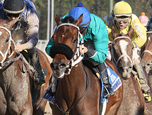 Monono wins the 2012 Orleans Stakes.