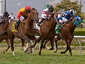 Moonshine Bay wins the 2014 Albany Stakes.