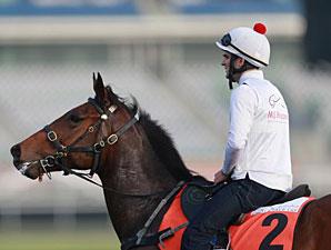 Mr Big - Dubai, March 26, 2013.