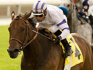Mr Gruff wins the 2010 San Simeon.