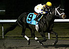 Maker Duo Leads WEBN Stakes at Turfway