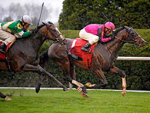 Turf Specialist Mr. Sidney to Run in Met Mile