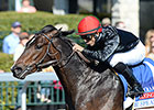 Mr. Speaker Takes Down Coolmore Lexington