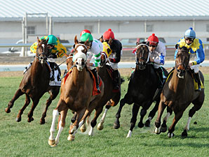 Two Fair Grounds Turf Stakes Moved to Jan. 26