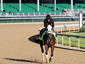 Mr. Z at Churchill Downs 4.28.15.