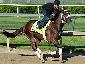 Mr. Z at Churchill Downs April 27.