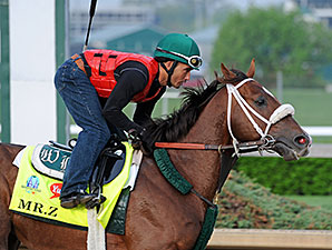 Mr. Z - Churchill Downs, April 18, 2015.