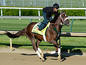 Mr. Z at Churchill Downs 4.27.15.