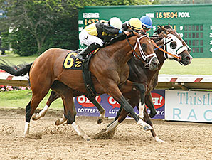Mr. Z wins the 2015 Ohio Derby.