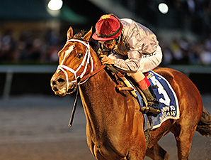 Mshawish Impressive in Final Drill for Dubai