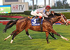 Mshawish Gets U.S. Graded Ft. Lauderdale Win