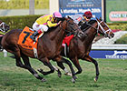 Mshawish Squeezes Out Gulfstream Turf 'Cap