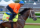 Mubtaahij Breezes Easy Three Furlongs