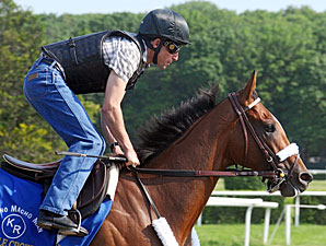 Back to Work for Mucho Macho Man