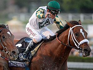 Mucho Macho Man Returns to Gulfstream Tab