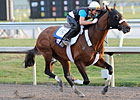 Mucho Macho Man Breezes Half at Gulfstream