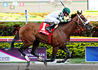 Eighth Pole Key for Mucho Macho Man