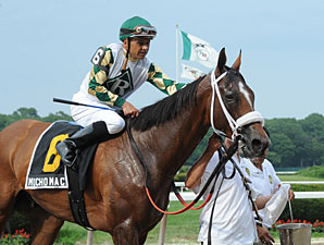 Mucho Macho Man Honors Holy Bull
