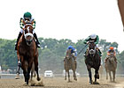 Mucho Macho Man Sizzles in Suburban