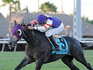 Mucho Mas Macho wins the 2013 Ft. Lauderdale Stakes.