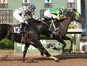 Muffin with Francisco Torres aboard outduels Dubai Star to win the $150,000 Elge Rasberry Stakes at Louisiana Downs.