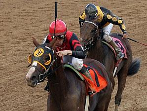 Muir Woods wins the 2011 Norm Barron Queen City Oaks.