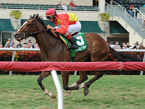 Musical Flair wins the 2012 Needles Stakes.