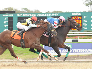 No Pushovers in Short Monmouth Cup Field