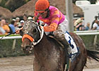 Haskin's Derby Trail: 2/16/2012
