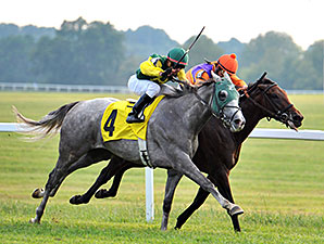 My Afleet wins the 2014 Dueling Grounds Derby.