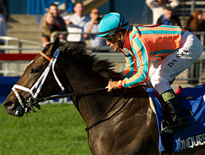 Keeneland's Darley Alcibiades is Wide Open