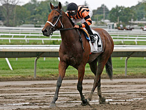 My Due Process wins the 2011 Monmouth Park NATC Filly Division.