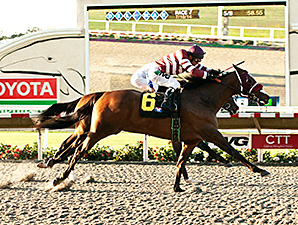 My Fiona wins the 2014 California Thoroughbred Breeders' Association Stakes.
