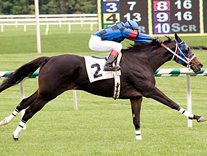 My Main Starr wins the 2010 Dahlia Stakes.