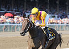My Miss Aurelia Breezes, Doubtful for Test