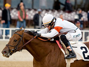 My Time to Star wins the 2009 Sun Power.