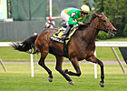 Mystical Star Gets Revenge in New York Stakes