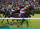 JRA Cancels Nakayama March schedule