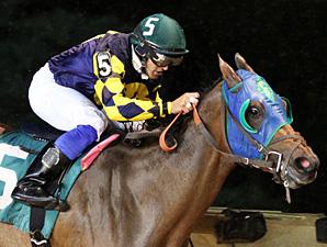 Nana Anna wins the 2013 Rachel's Turn Stakes.