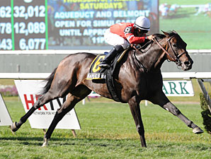 Naples Bay Sails Home in Noble Damsel Stakes
