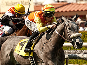 Nashoba's Gold wins the 2014 Providencia Stakes.