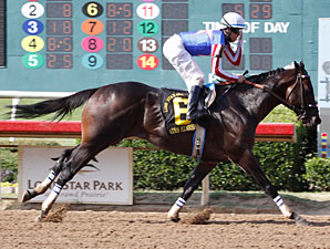 Nates Mineshaft wins the 2012 Lone Star Park Handicap.