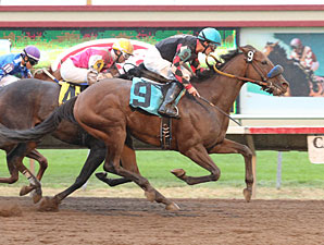 Canterbury Park Wraps Up Successful Season