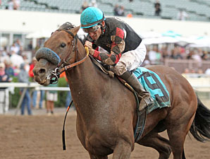 National wins the 2013 H. B. P. A. Sprint Handicap.