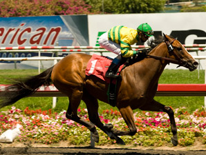 Necessary Evil Back With Fillies for Sorrento