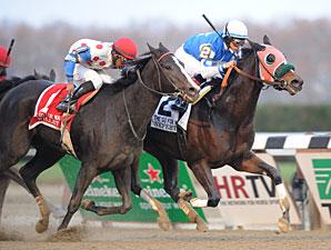 Nefertini wins the 2012 Go for Wand.