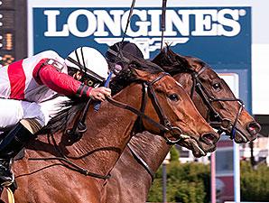 Nellie Cashman wins the 2015 Dahlia Stakes.