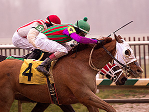 Never Stop Looking wins the 2015 Fire Plug Stakes.