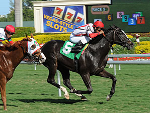 News Pending - Maiden Win, December 22, 2011.