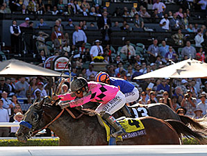 New's Year's Day wins the 2013 Breeders' Cup Juvenile.
